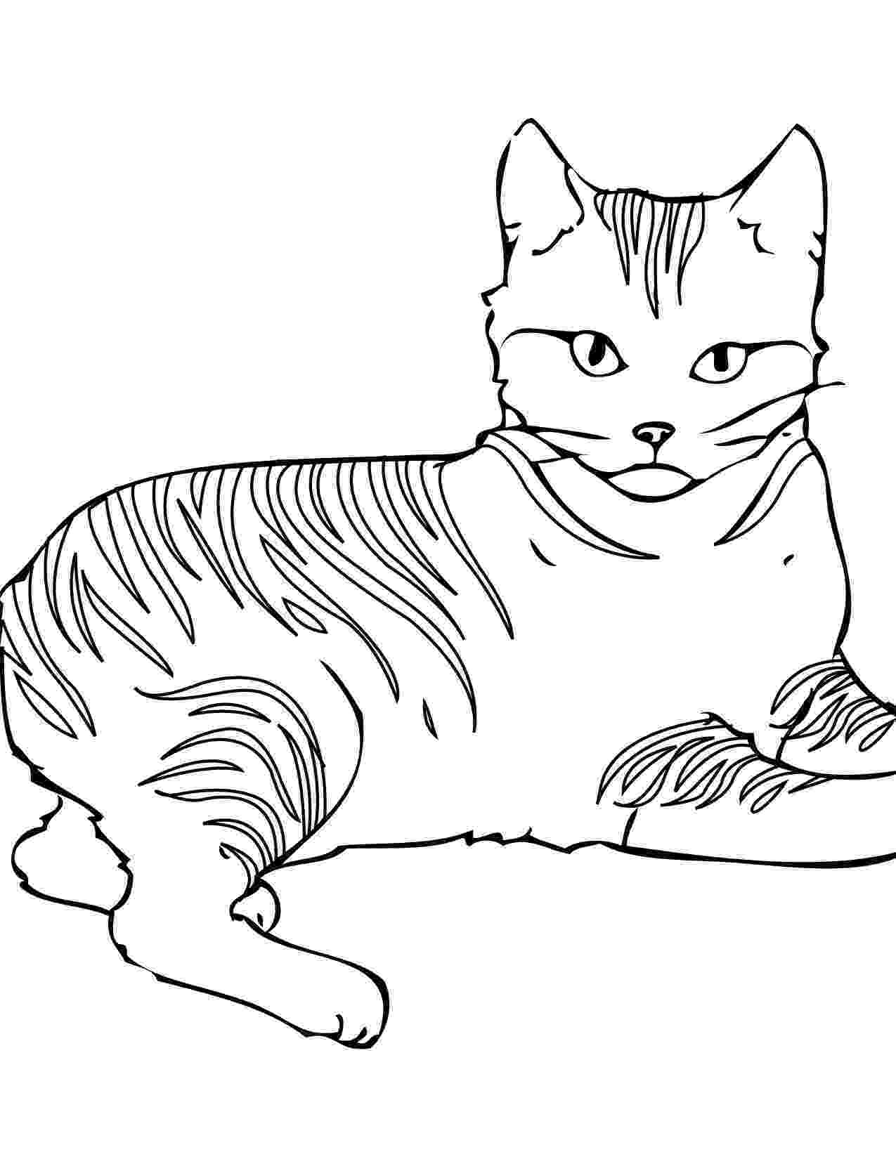 picture of a cat to color free printable cat coloring pages for kids picture a cat color of to