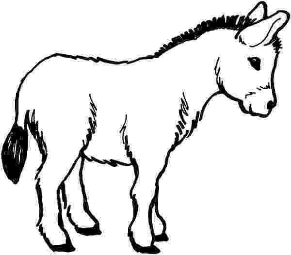 picture of a donkey to color donkey coloring pages to download and print for free donkey a of color picture to