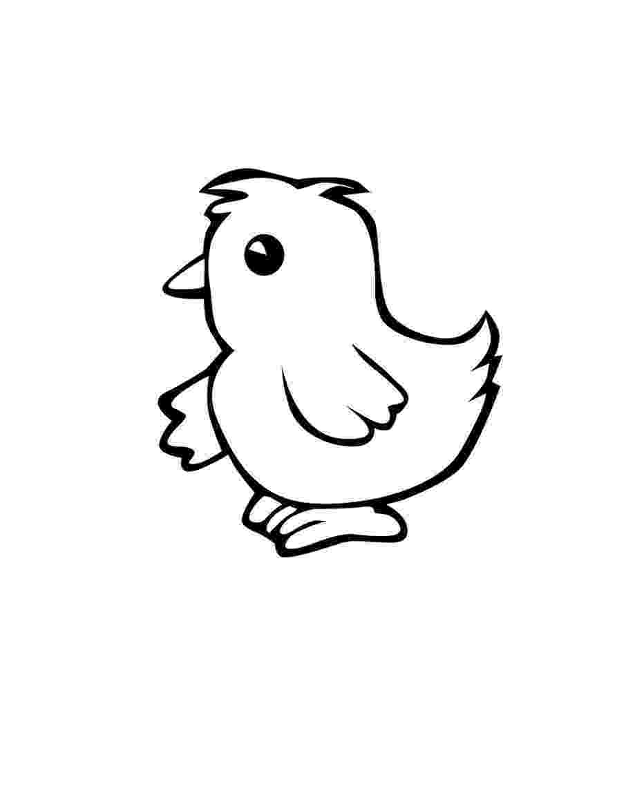 picture of chicken chicken coloring pages to download and print for free chicken of picture
