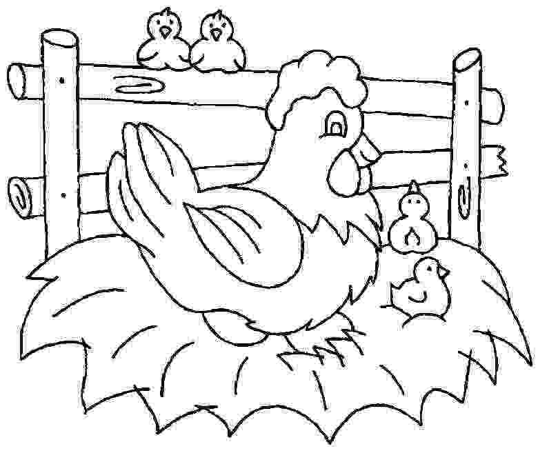 picture of chicken free printable chicken coloring pages animal chicken picture of chicken