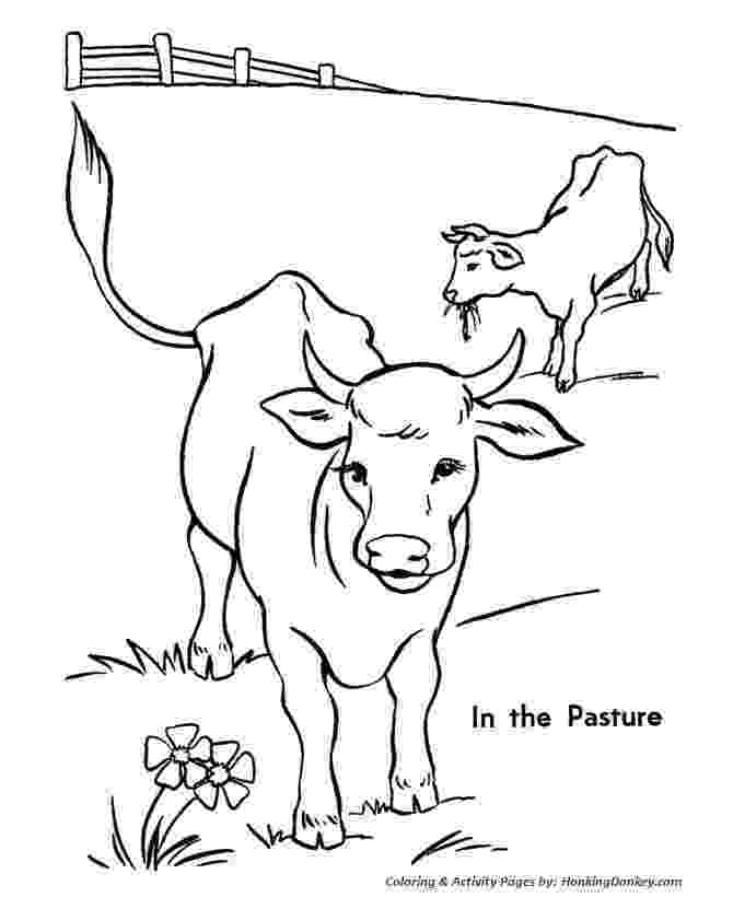 picture of cow for colouring 11 best images about 4 h activities on pinterest cow for of colouring picture