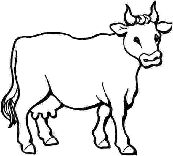 picture of cow for colouring farm animal cattle cow coloring sheet colouring cow picture of for