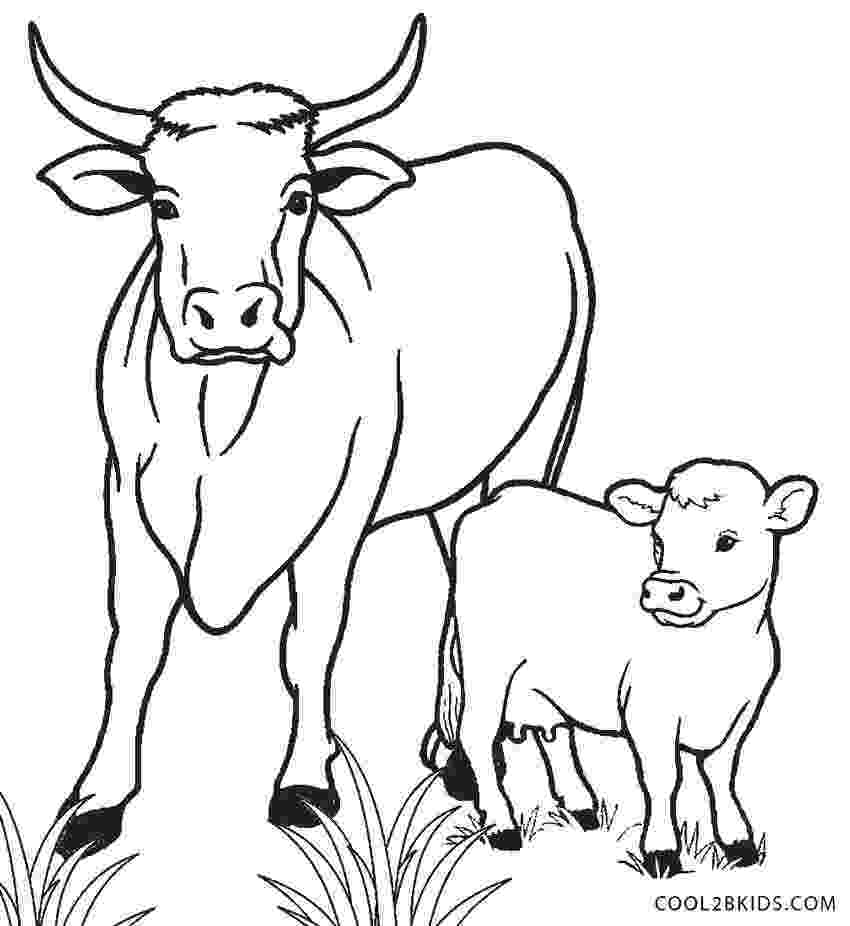picture of cow for colouring free printable cow coloring pages for kids cool2bkids cow of for picture colouring 1 1