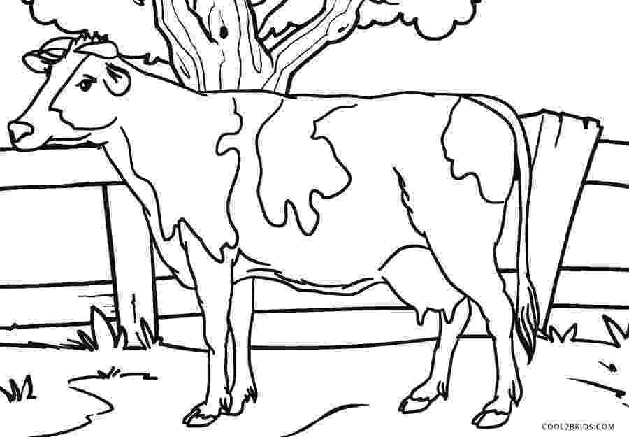 picture of cow for colouring free printable cow coloring pages for kids cool2bkids cow picture of for colouring