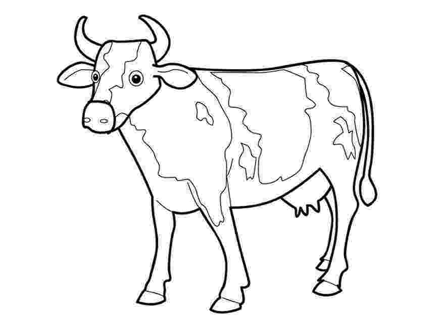 picture of cow for colouring free printable cow coloring pages for kids cow coloring picture colouring of cow for