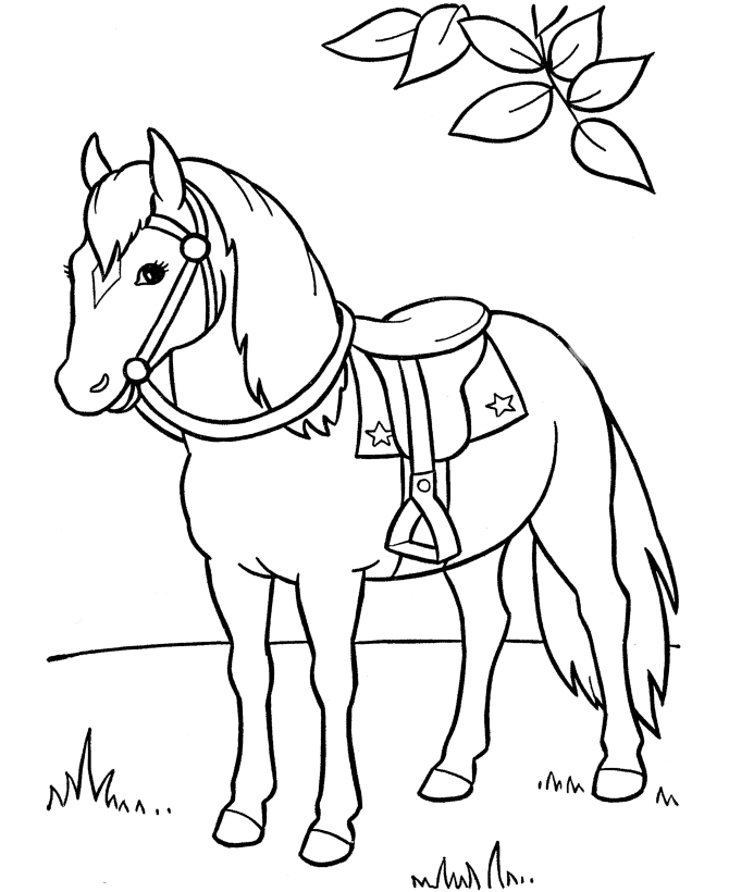 picture of horses to color horse coloring pages coloringpages1001com color picture horses of to