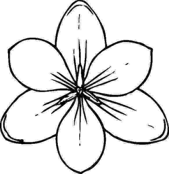 pictures of flowers coloring pages free printable flower coloring pages for kids best flowers pictures of pages coloring
