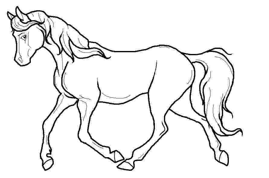 pictures of horses to trace silly cartoon creative dreamers horses to pictures trace of