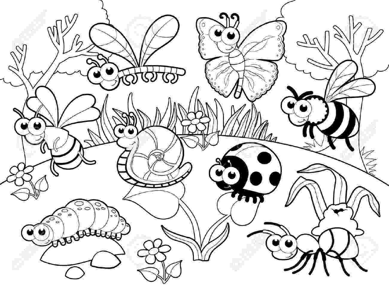 pictures of insects to color color my classroom bugs by schoolgirl style bug insects to color of pictures insects