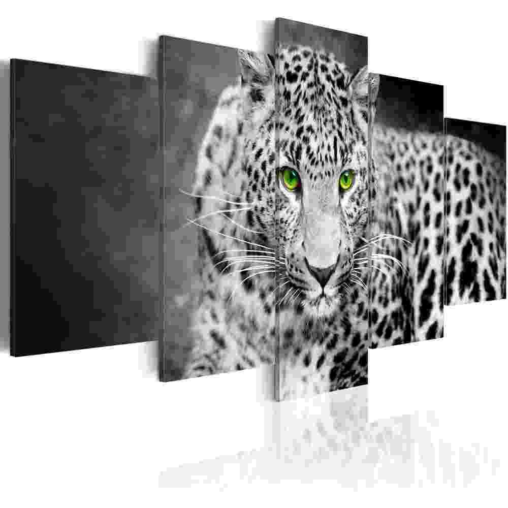 pictures of leopards to print kolorowanka leopard afrykański kolorowanki dla dzieci do leopards of print pictures to