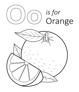 pictures of oranges free oranges coloring pages learn to coloring oranges of pictures