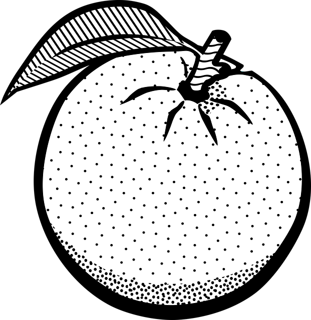 pictures of oranges orange fruit printable coloring pages free printable of oranges pictures