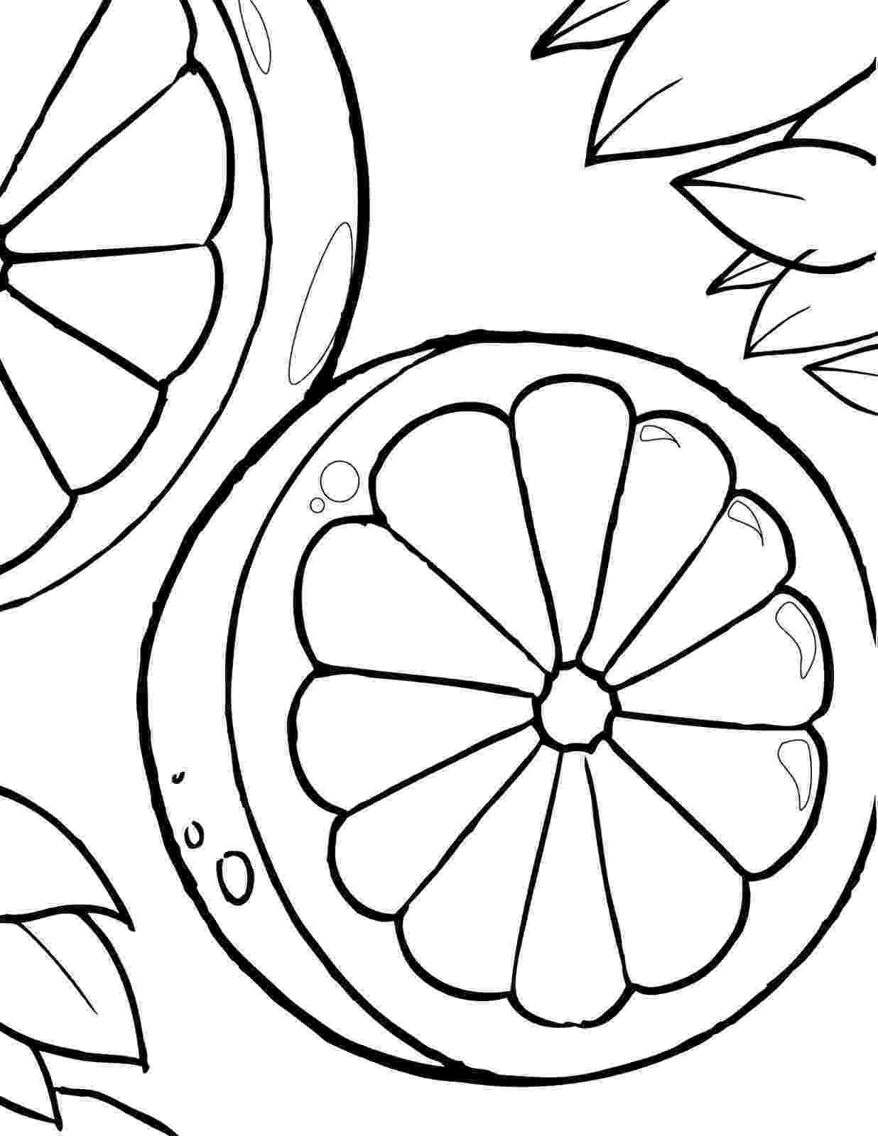 pictures of oranges oranges on a branch fruit coloring page for kids fruits of oranges pictures