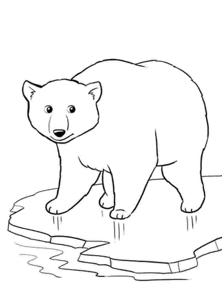 pictures of polar bears to color free printable polar bear coloring pages for kids polar pictures color bears of to