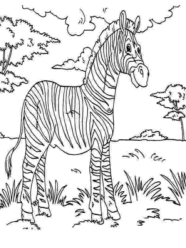 pictures of rainforest animals to color rainforest coloring pages to download and print for free of color animals to rainforest pictures