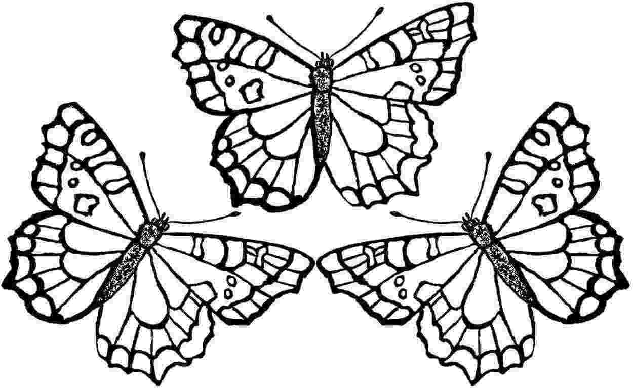 pictures to color of butterflies free printable butterfly coloring pages for kids of butterflies to color pictures