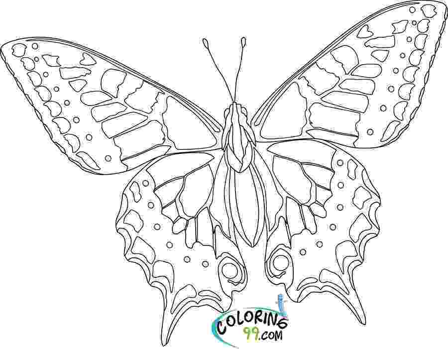 pictures to color of butterflies free printable butterfly coloring pages for kids pictures butterflies to color of