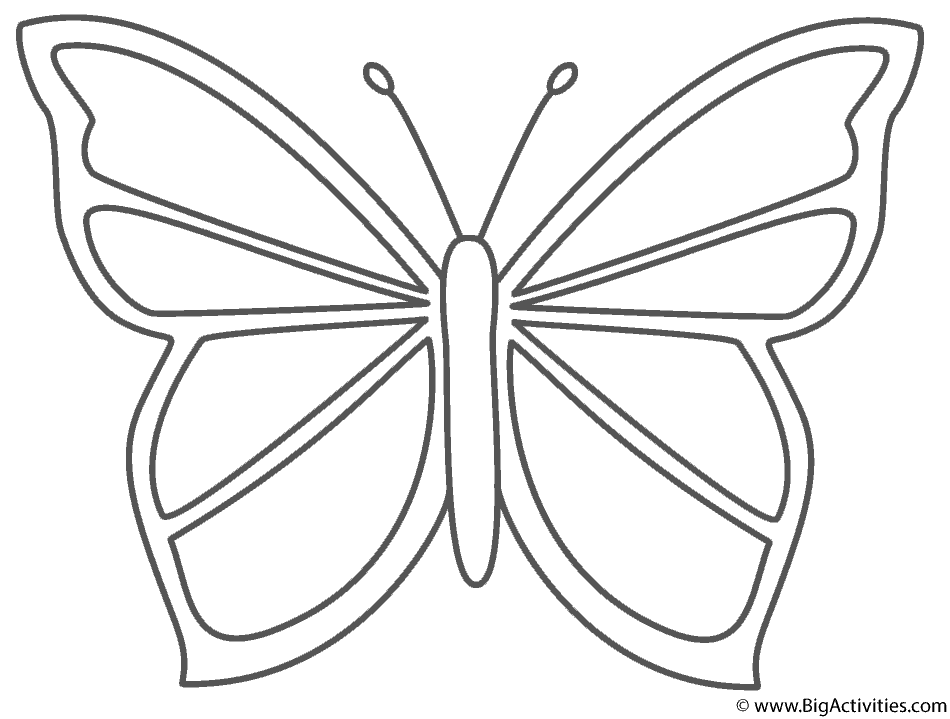 pictures to color of butterflies insect coloring pages best coloring pages for kids of butterflies pictures color to