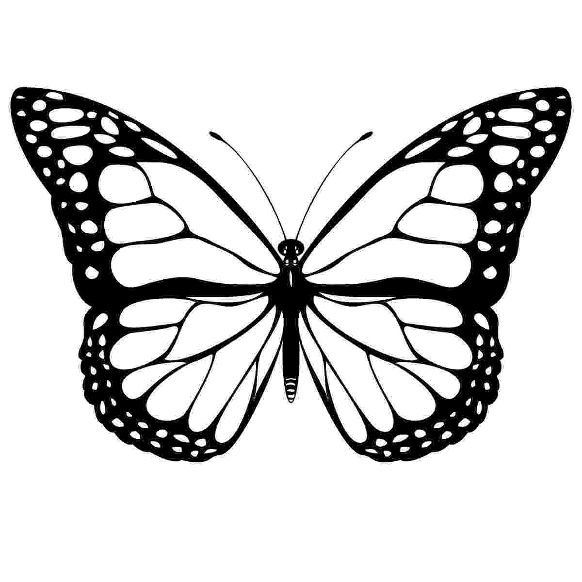 pictures to color of butterflies printable butterfly coloring pages for kids cool2bkids of color to pictures butterflies