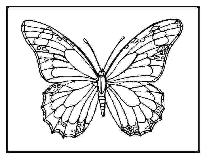 pictures to color of butterflies printable butterfly coloring pages for kids cool2bkids pictures butterflies color to of