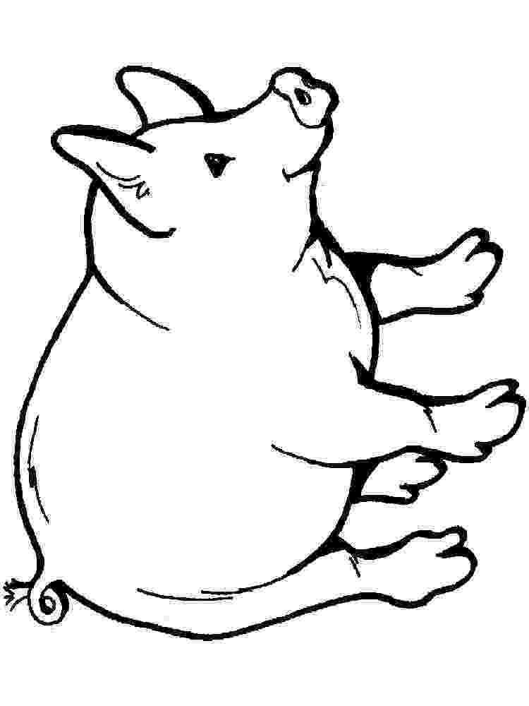 pig printable free printable pig coloring pages for kids pig printable 1 1