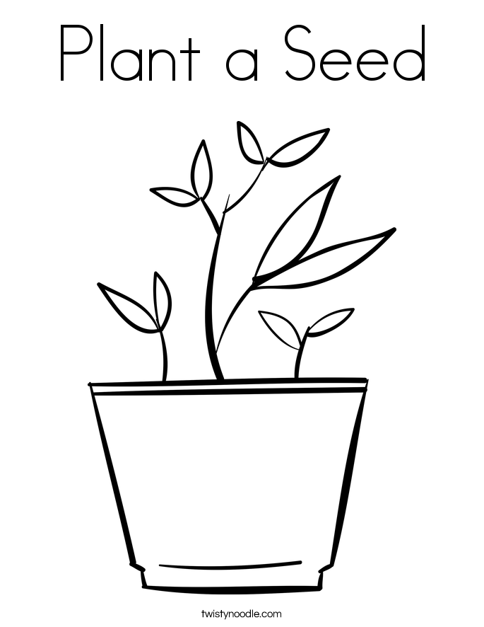 plant colouring sheets plant coloring page coloring home colouring plant sheets