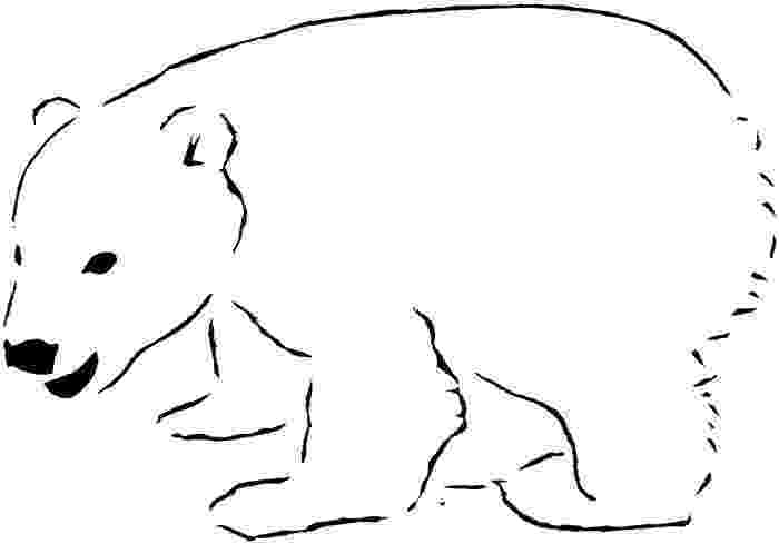 polar bear pictures to colour polar bears printable coloring page instant by pictures to colour polar bear