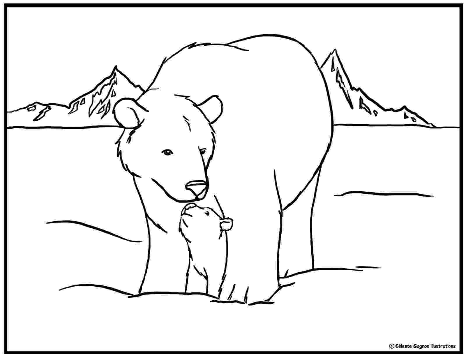 polar bear pictures to colour scribbles and doodles free stuff pictures to colour bear polar