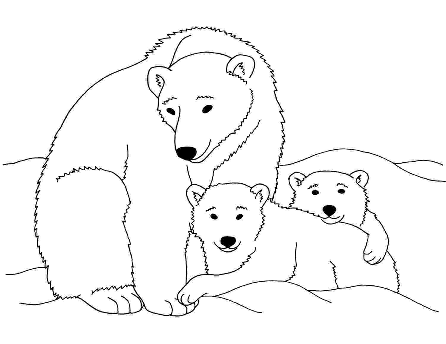polar bear pictures to print free printable polar bear coloring pages for kids to pictures print bear polar