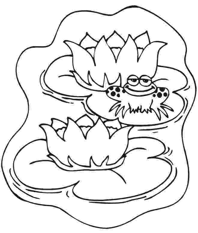 pond coloring page animals coloring in the pond coloring pages pond coloring page