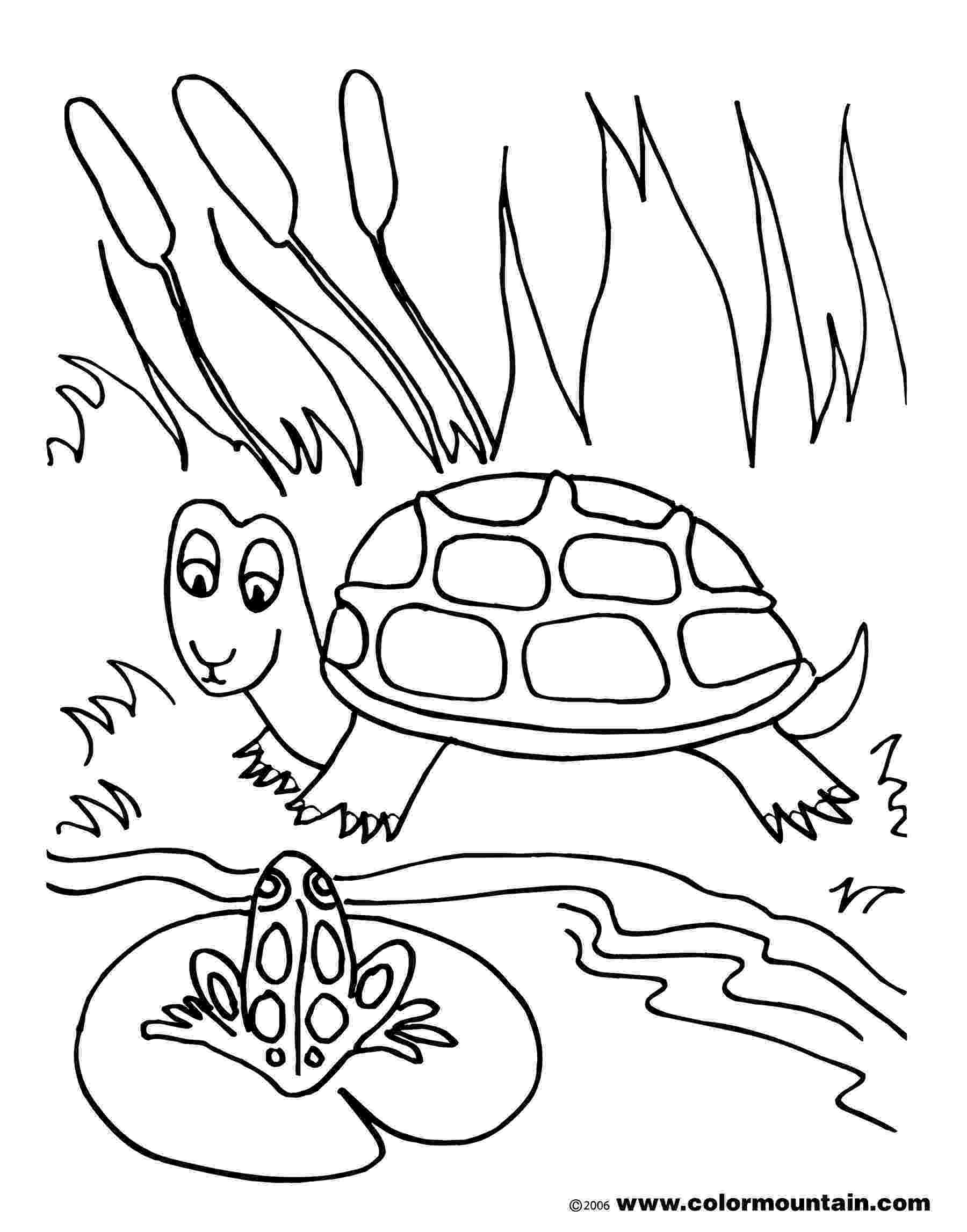 pond coloring page fish pond drawing at getdrawingscom free for personal coloring pond page