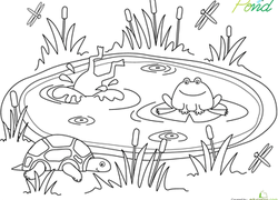 pond coloring page kindergarten coloring pages printables educationcom page pond coloring