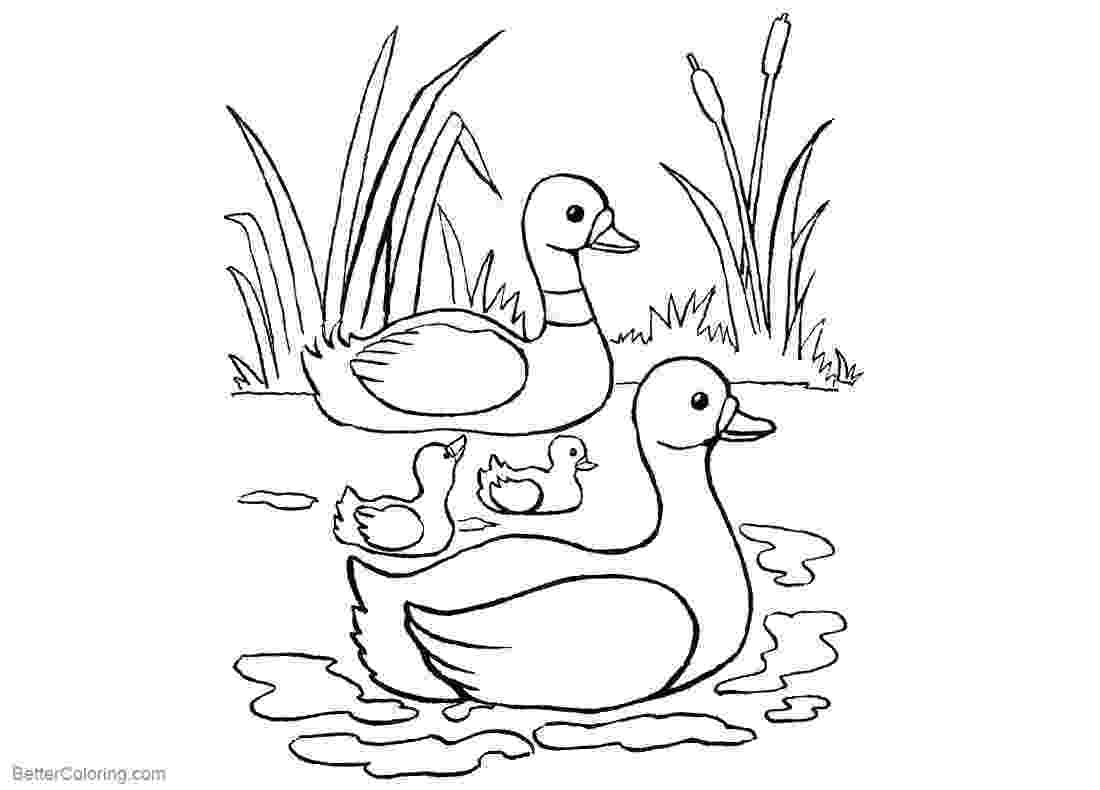 pond coloring page pond coloring pages ducks and cattails free printable pond page coloring