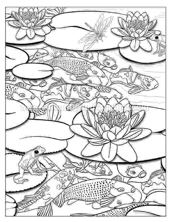 pond coloring page pond drawing at getdrawings free download page pond coloring