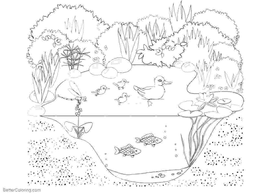 pond pictures to color pond coloring page stock vector illustration of water pond color to pictures