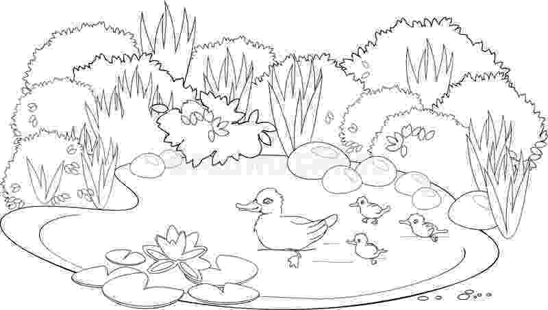 pond pictures to color pond coloring pages animals and plants free printable pond color to pictures