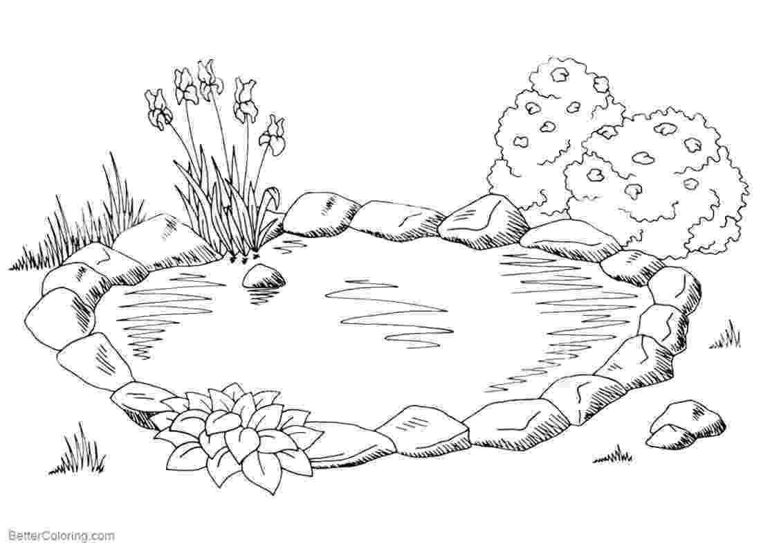 pond pictures to color pond coloring pages ducks and cattails free printable pond color to pictures