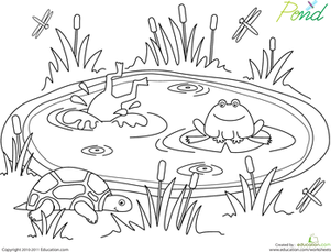 pond pictures to color pond coloring pages small pond with water lily flowers pond to pictures color