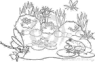 pond pictures to color pond life cyles colouring pages 89ycmz clipart kid color to pond pictures