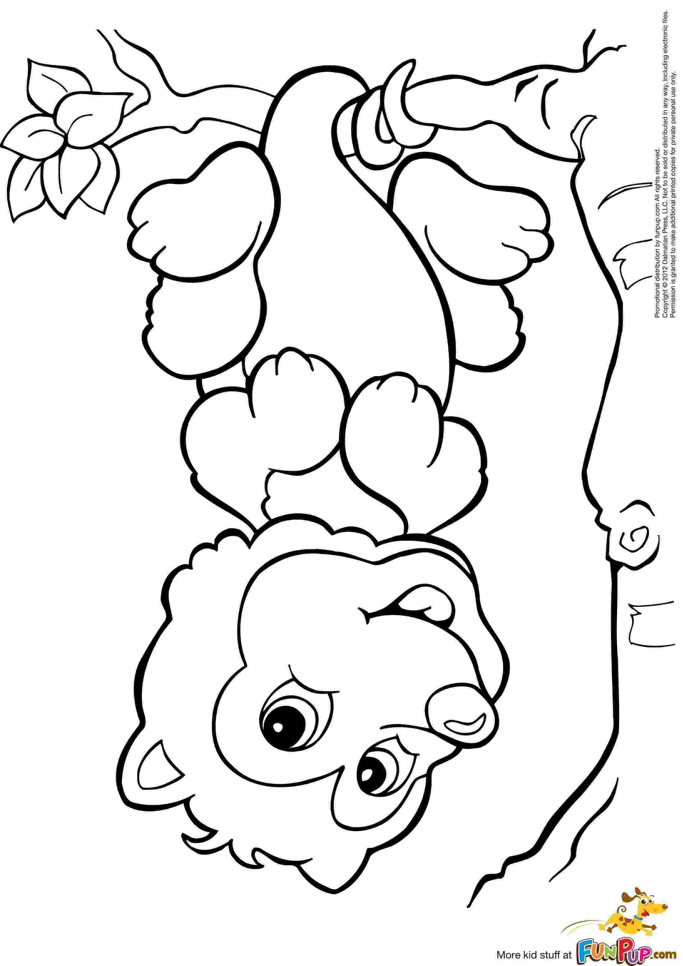 possum colouring pages possum coloring page free printable coloring pages possum colouring pages