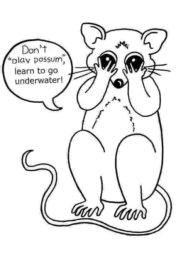possum colouring pages top 10 possum opossum coloring pages for your kids pages possum colouring