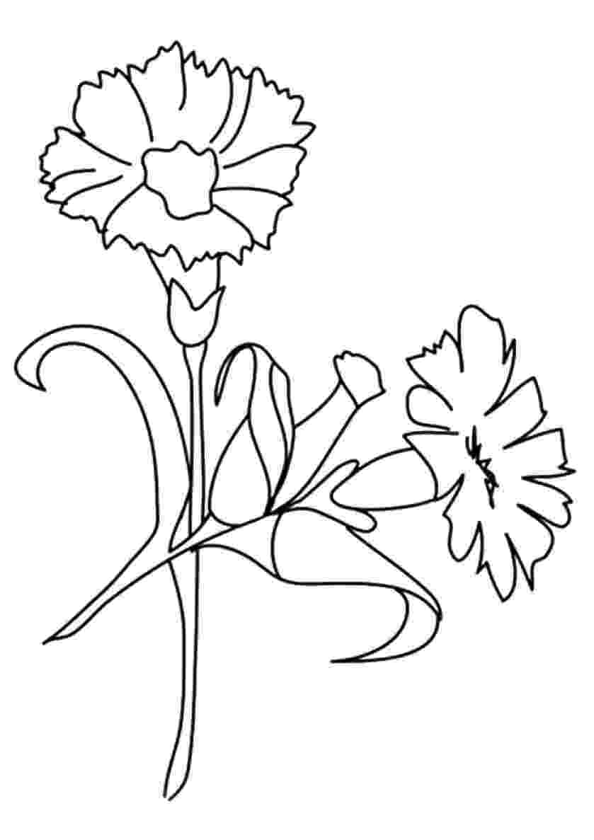 pretty flowers coloring pages beautiful printable flowers coloring pages flowers coloring pretty pages 1 1