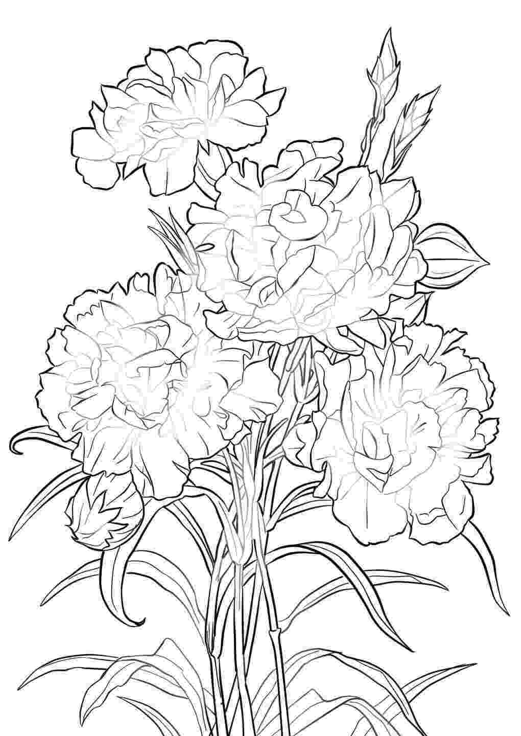pretty flowers coloring pages free printable bursting blossoms flower coloring page coloring pages flowers pretty