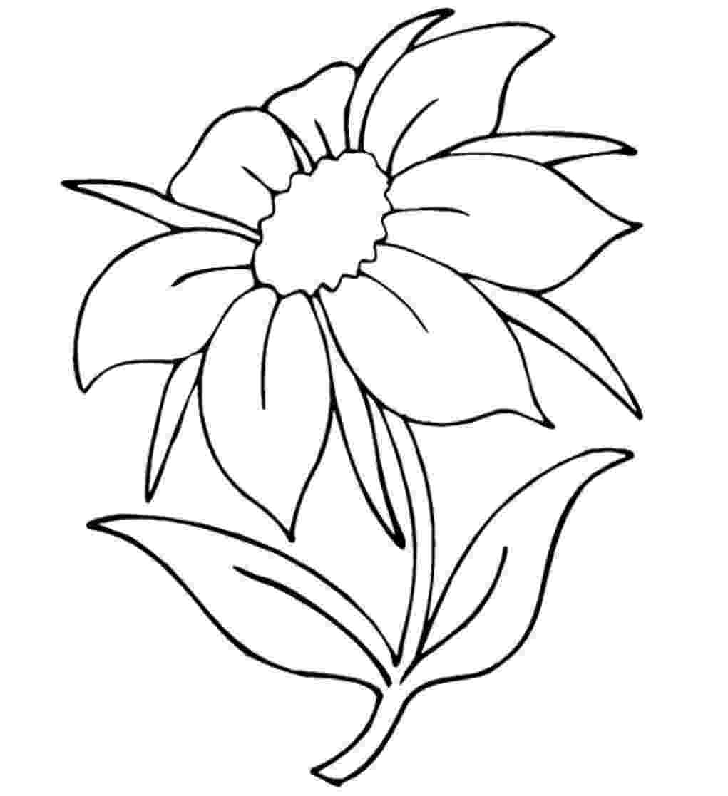 pretty flowers coloring pages pretty flower coloring pages flowers coloring pretty pages