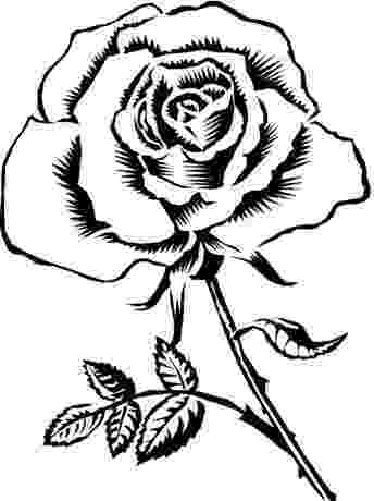 pretty flowers coloring pages pretty rose coloring pages more to color all ages flowers coloring pages pretty