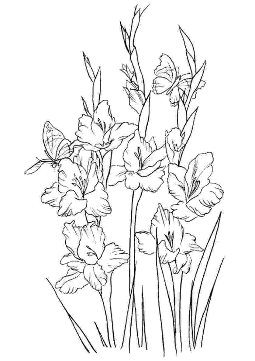 pretty flowers coloring pages welcome to dover publications pretty coloring flowers flowers pages coloring pretty