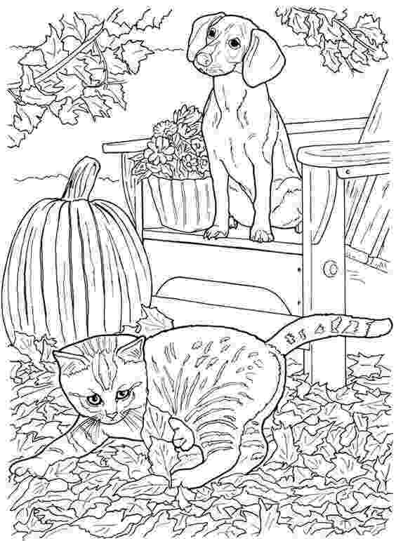 printable coloring pages cats and dogs 1033 best printables cats and dogs images on pinterest pages cats printable dogs and coloring