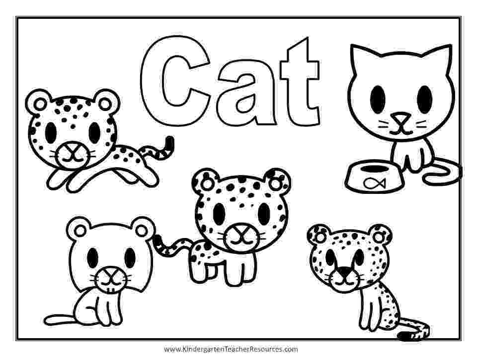 printable coloring pages cats and dogs coloring pages cats and dogs coloring dogs and printable pages cats