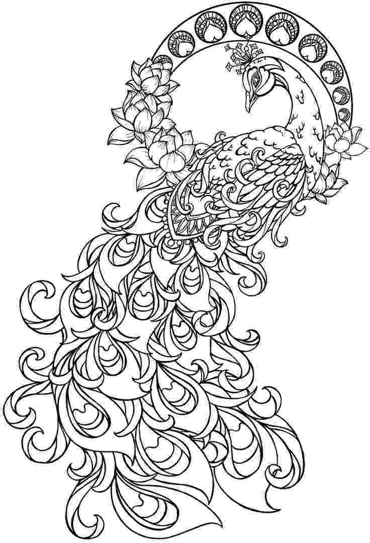 printable coloring pages peacock peacock in flowers coloring page free printable coloring printable pages peacock coloring