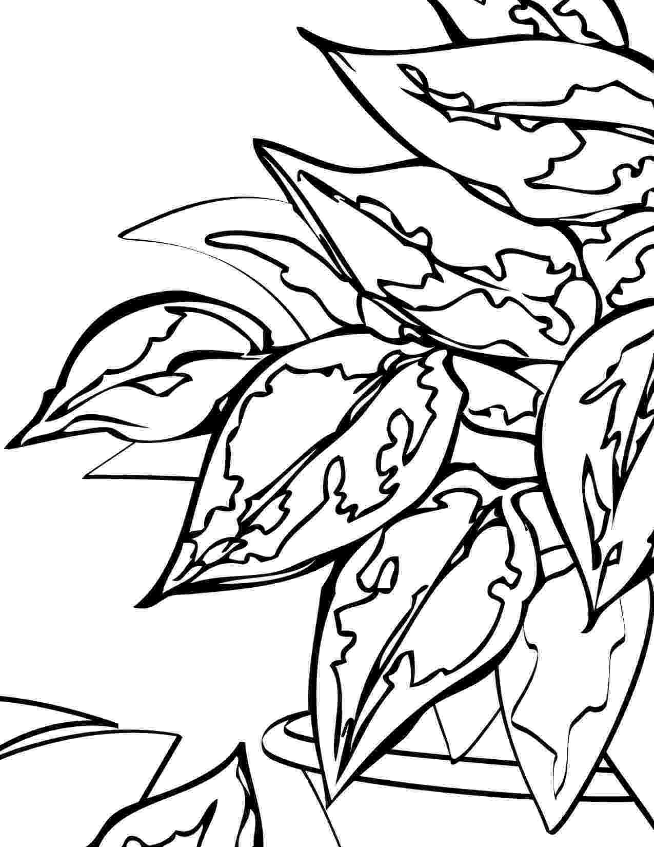 printable coloring pages plants plant coloring page coloring home coloring plants printable pages